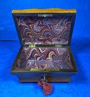 Georgian  French Cut Steel Mounted Satinwood Box (8 of 16)
