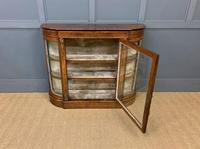 Victorian Burr Walnut Glazed Side Cabinet (10 of 15)