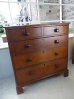 Neat Regency Oak Chest of Drawers