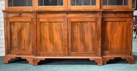 19th Century Victorian Mahogany Breakfront Bookcase (3 of 11)
