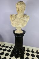 Large Plaster Bust of Augustus (2 of 7)