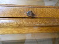 Set of Four Oak Globe Wernicke Bookcases (6 of 11)