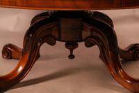Victorian Burr Walnut Coffee Table (6 of 7)