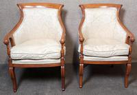 Pair of French Empire Style Armchairs (3 of 13)