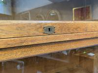 Globe Wernicke Type Bookcase by Lebus (12 of 14)