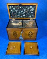 George III Satinwood Twin Tea Caddy with Prince of Wales Inlay (13 of 15)