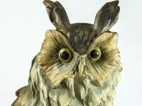 Rare Porcelain Long Eared Owl on Log (6 of 6)