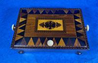 Georgian Kingwood & Tunbridge Ware Table Box (12 of 14)