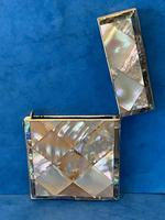 Victorian Abalone & Mother of Pearl Card Case (14 of 16)
