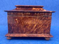 Victorian Tortoiseshell Tea Caddy with Mother of Pearl Inlay (12 of 20)