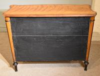George III Satinwood Chiffonier Side Cabinet (3 of 9)