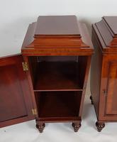 Pair of Regency Mahogany Pedestal Cabinets (6 of 8)