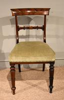 Set of Six William IV Rosewood Dining Chairs (3 of 8)
