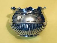 Small Frederick Elkington Silver Fern Pot
