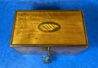 George III Satinwood Twin Tea Caddy with Prince of Wales Inlay (5 of 15)