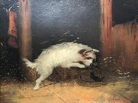 Pair of Victorian 19th Century Oil Paintings Terrier Dogs Ratting Signed J Langlois (16 of 35)
