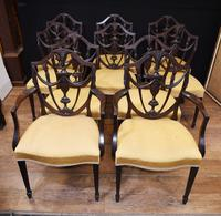 Set 10 Adams Shield Back Dining Chairs Mahogany (3 of 9)