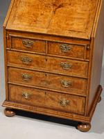 Small Early 20th Century Queen Anne Style Cabinet (4 of 5)