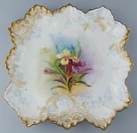 Good Royal Doulton Burslem Hand Painted Dessert Set 19th Century (3 of 12)