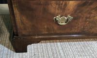 Burr Walnut Chest of Drawers (9 of 14)