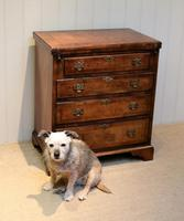 Small Proportioned Walnut Batchelors Chest (8 of 8)