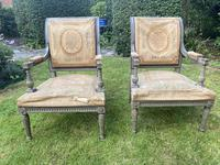 Pair of Directoire Style Armchairs (2 of 6)
