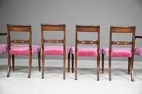 Set of 6 Regency Mahogany Dining Chairs (5 of 13)