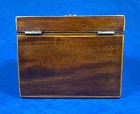 18th Century Mahogany  Shell Inlaid Tea Caddy (13 of 18)