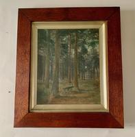 Pair of 19thc Woodland Scenes - signed Macdonald (4 of 5)