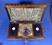 William IV Rosewood Tea Caddy (2 of 13)