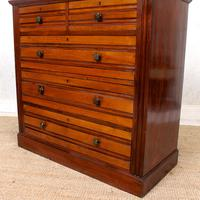 Walnut Chest of Drawers 19th Century (8 of 12)