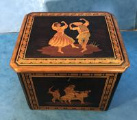 Victorian Italian  Sorento Ware Single Tea Caddy (4 of 16)