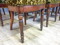 12 Walnut Irish Dining Chairs (2 of 7)