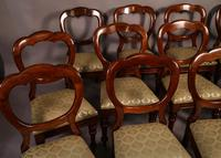 Good Set of 12 Victorian Balloon Back Dining Chairs (2 of 11)