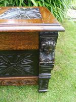 Country Oak Cottage Coffer 1860 (6 of 12)