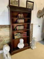 Superb Large 19th Century Mahogany Open Bookcase (3 of 8)
