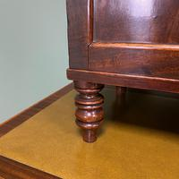 Spectacular Small Regency Antique Mahogany Collectors Cabinet (8 of 8)