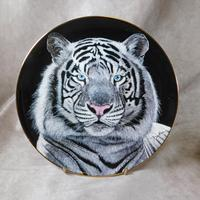 Set of Six Royal Doulton Limited Edition Collectors Plates (7 of 15)