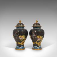 Pair of Antique Decorative Spice Jars, Chinese, Cloisonne, Baluster Urn c.1900 (6 of 12)