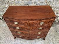 Regency Flame Mahogany Bow Front Chest of Drawers (3 of 17)