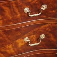 Edwardian Small Serpentine Chest (9 of 10)