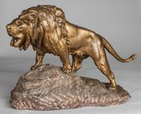 Stunning Large French Bronze Sculpture of Roaring Lion - Signed Le Courtier (5 of 10)