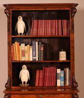 Open Bookcase in Burl Walnut - 19th Century (4 of 13)