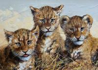 Exceptional 'pride Of Lion Cubs' Large Wildlife Oil Painting By 'silvia Duran' (5 of 12)