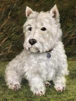 20th Century Oil Painting Animal Portrait Highland Westie White Terrier Dog (2 of 12)