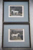 Pair Antique Race Horse Engravings (6 of 11)