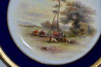 Royal Worcester Dish 1914 - Hand-painted Lowland Cattle by John Stinton, (4 of 9)