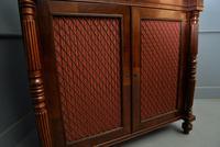 Fine Regency Mahogany Chiffonier Side Cabinet (18 of 18)