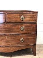 Georgian Mahogany Bow Front Chest of Drawers (3 of 10)