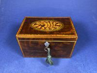 18th Century Mahogany Twin Tea Caddy with Shell Inlay (2 of 17)